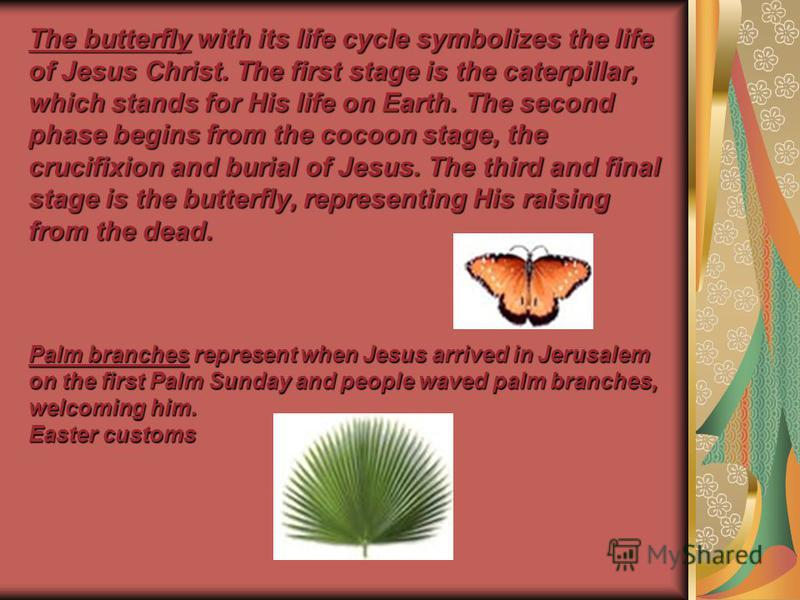 The butterfly with its life cycle symbolizes the life of Jesus Christ. The first stage is the caterpillar, which stands for His life on Earth. The second phase begins from the cocoon stage, the crucifixion and burial of Jesus. The third and final sta