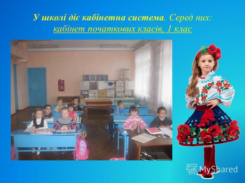 У школі діє кабінетна система. Серед них: кабінет початкових класів, 1 клас