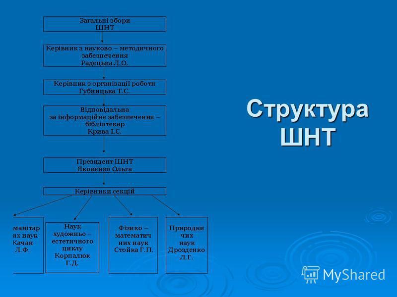 Структура ШНТ
