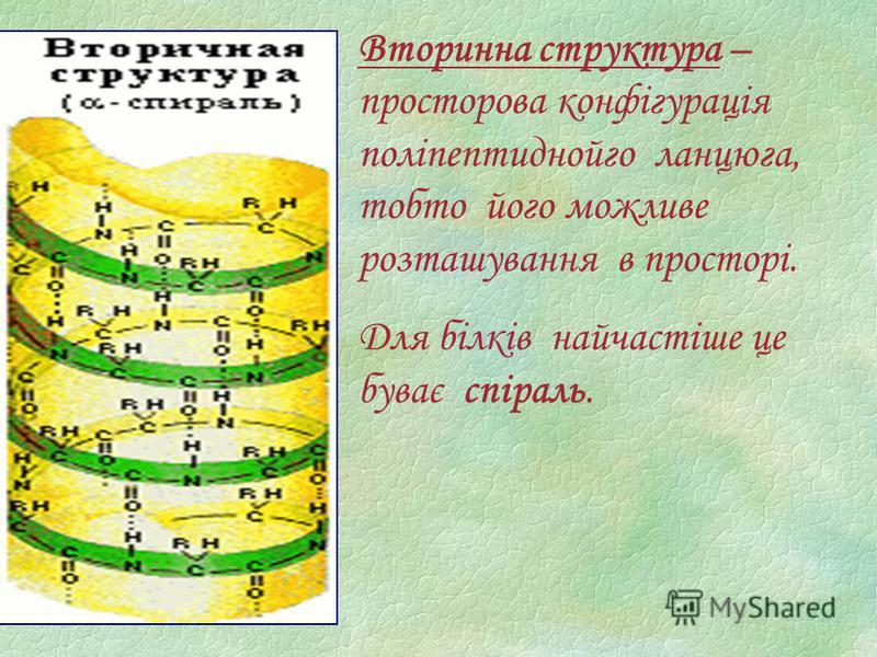 Вторинна структура – просторова конфігурація поліпептиднойго ланцюга, тобто його можливе розташування в просторі. Для білків найчастіше це буває спіраль.
