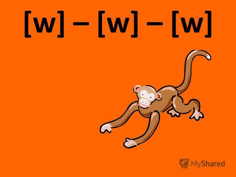 [w] – [w] – [w]