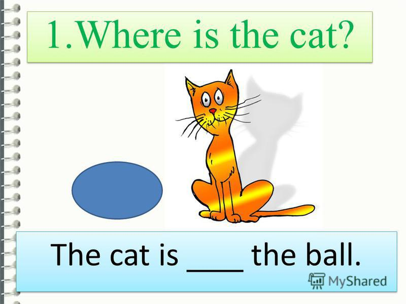 1. Where is the cat? The cat is ___ the ball.