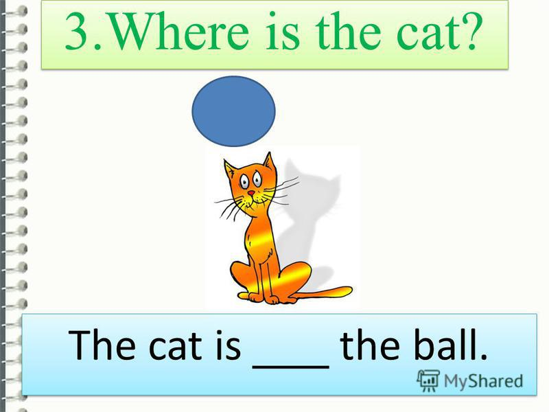 3. Where is the cat? The cat is ___ the ball.