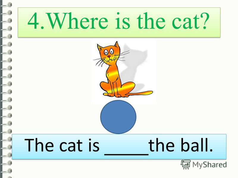 4. Where is the cat? The cat is ____ the ball.