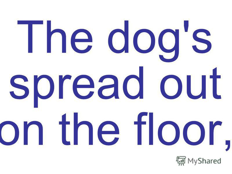 The dog's spread out on the floor,