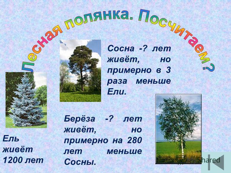 1. Какие числа называют натуральными? 2. Почему натуральные числа так называют? 3. Самое маленькое натуральное число? 4. Самое большое натуральное число?