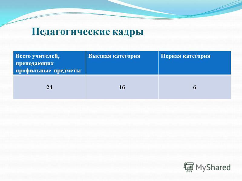 Педагогические кадры Всего учителей, преподающих профильные предметы Высшая категория Первая категория 24166