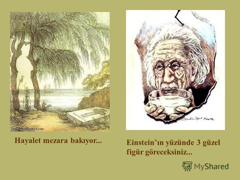 Hayalet mezara bakıyor... Einsteinın yüzünde 3 güzel figür göreceksiniz...