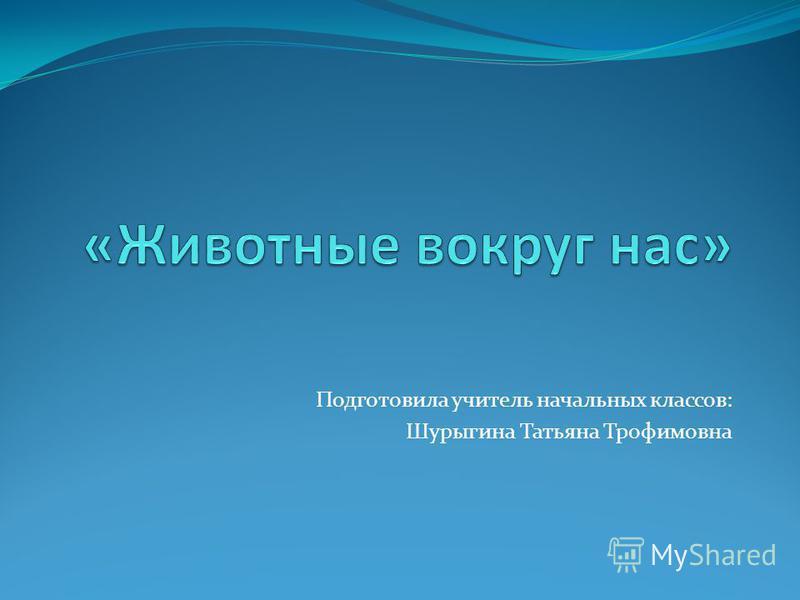Подготовила учитель начальных классов: Шурыгина Татьяна Трофимовна