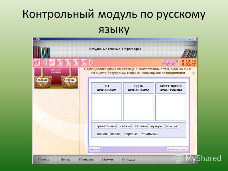 Контрольный модуль по русскому языку