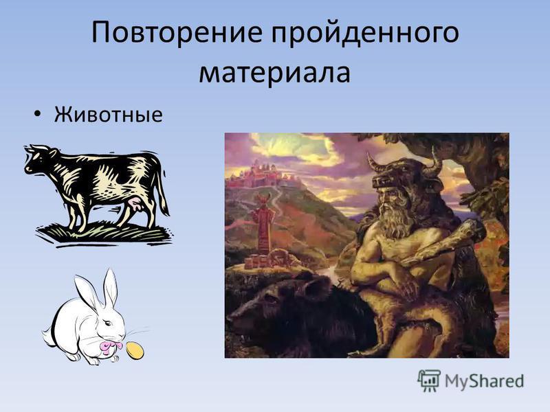 Повторение пройденного материала Животные