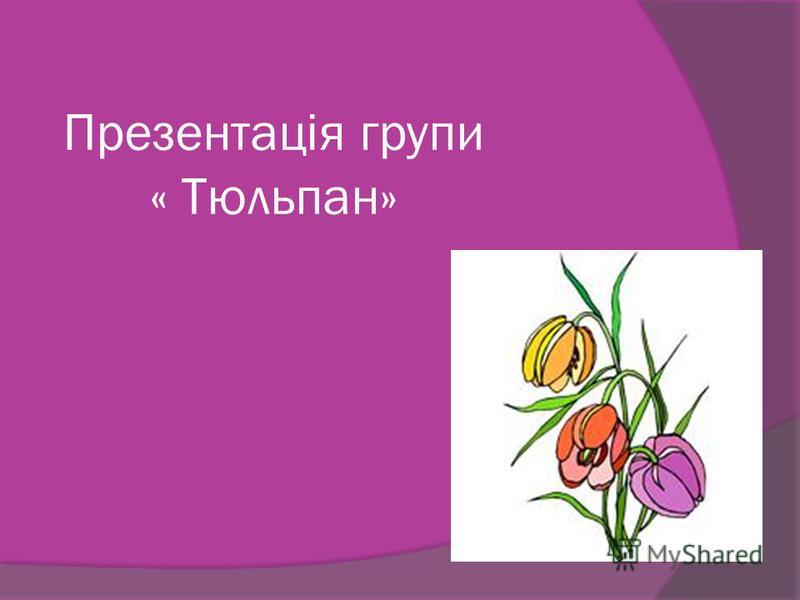 Презентація групи « Тюльпан»