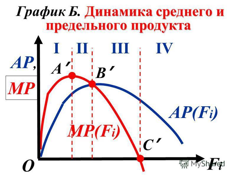 Динамика среднего и предельного продукта График Б. Динамика среднего и предельного продукта АP,АP, FiFi О В C А IIIIIIIV МPМP МP(F i ) АP(F i )...