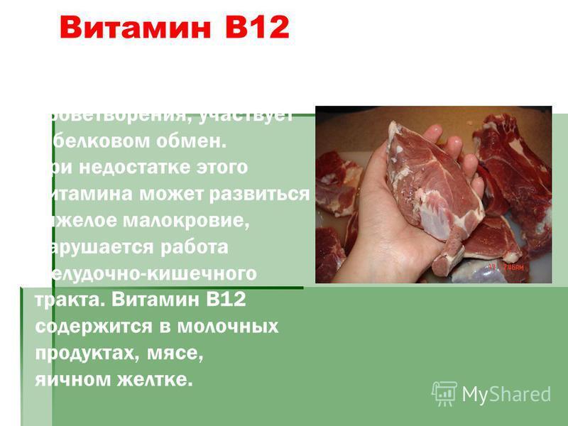 Витамин В12 играет большую роль в процессах кроветворения, участвует в белковом обмен. При недостатке этого витамина может развиться тяжелое малокровие, нарушается работа желудочно-кишечного тракта. Витамин В12 содержится в молочных продуктах, мясе,