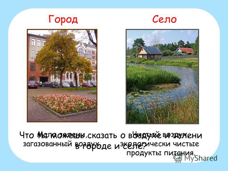 Мало зелени, загазованный воздух. Чистый воздух, экологически чистые продукты питания. Город Село Что ты можешь сказать о воздухе и зелени в городе и селе?