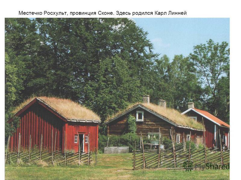 Местечко Росхульт, провинция Сконе. Здесь родился Карл Линней
