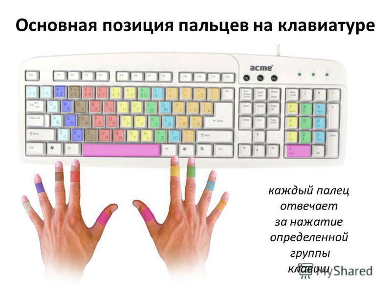 Основная позиция пальцев на клавиатуре каждый палец отвечает за нажатие определенной группы клавиш