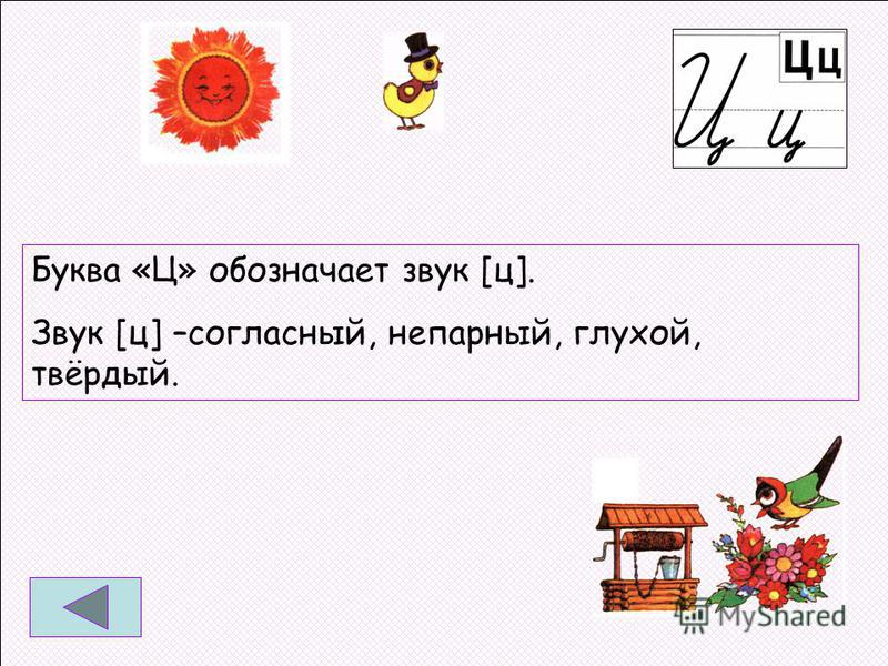 Буква «Ц» обозначает звук [ц]. Звук [ц] –согласный, непарный, глухой, твёрдый.