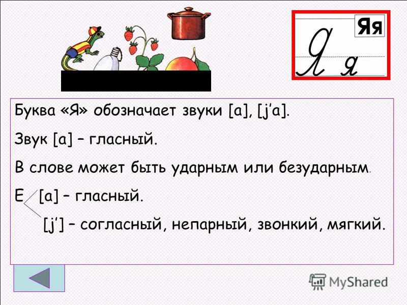 Буква «Я» обозначает звуки [а], [jo]. Звук [а] – гласный. В слове может быть ударным или безударным. Е [а] – гласный. [j] – согласный, непарный, звонкий, мягкий.