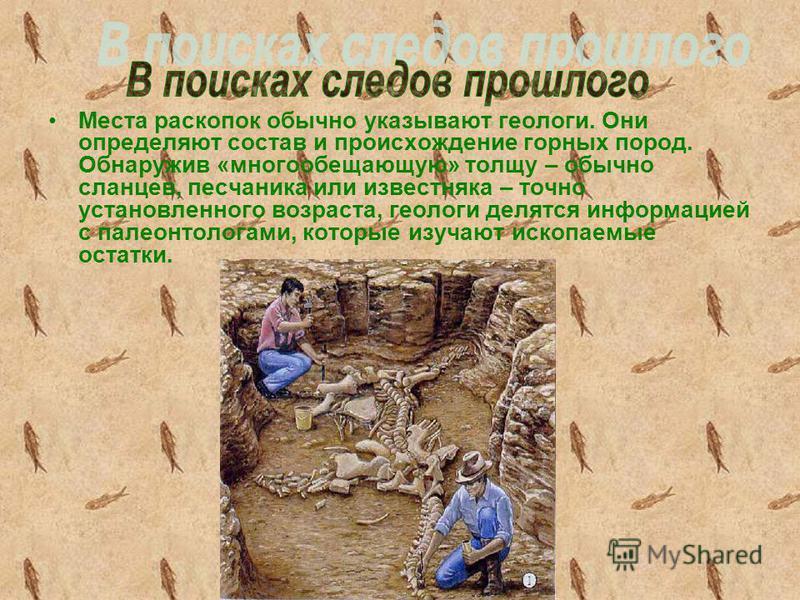 Места раскопок обычно указывают геологи. Они определяют состав и происхождение горных пород. Обнаружив «многообещающую» толщу – обычно сланцев, песчаника или известняка – точно установленного возраста, геологи делятся информацией с палеонтологами, ко