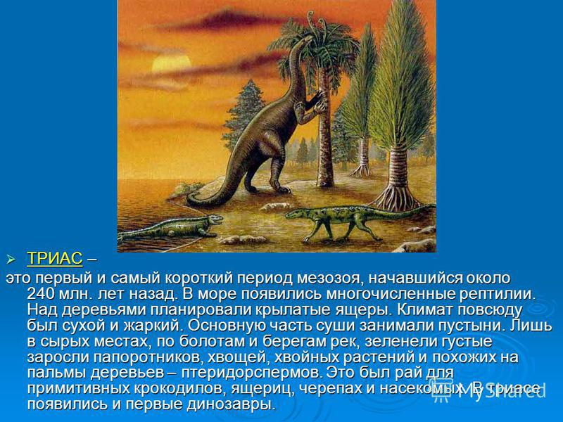 ТРИАС – ТРИАС – это первый и самый короткий период мезозоя, начавшийся около 240 млн. лет назад. В море появились многочисленные рептилии. Над деревьями планировали крылатые ящеры. Климат повсюду был сухой и жаркий. Основную часть суши занимали пусты
