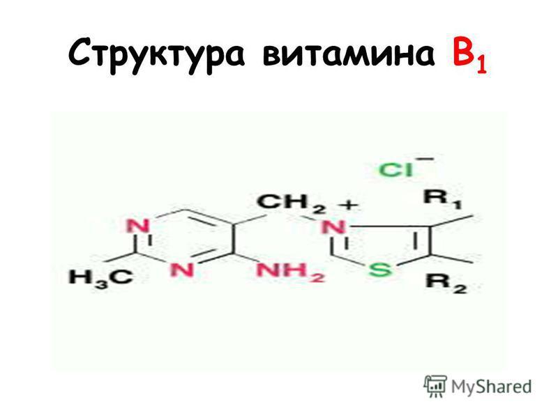 Структура витамина B 1
