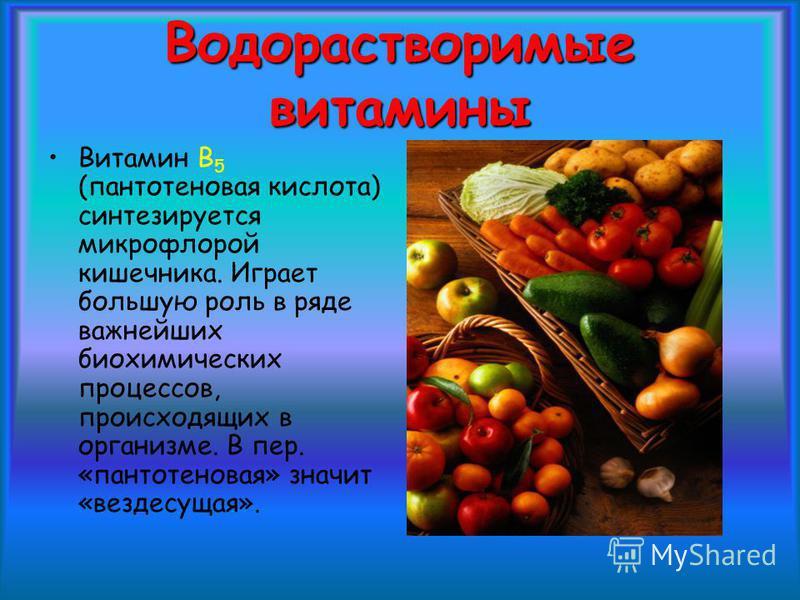 Водорастворимые витамины Витамин В 5 (пантотеновая кислота) синтезируется микрофлорой кишечника. Играет большую роль в ряде важнейших биохимических процессов, происходящих в организме. В пер. «пантотеновая» значит «вездесущая».