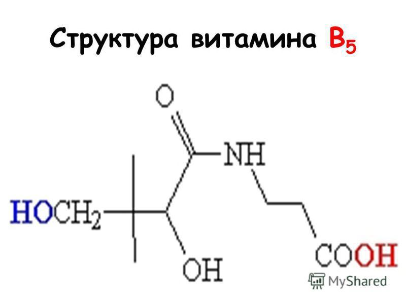 Структура витамина B 5