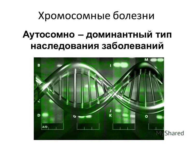 Хромосомные болезни Аутосомно – доминантный тип наследования заболеваний
