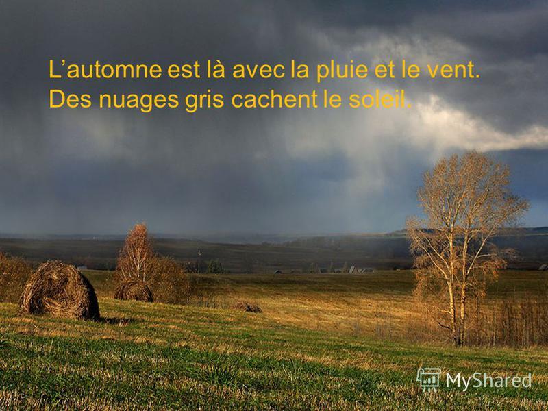 Lautomne est là avec la pluie et le vent. Des nuages gris cachent le soleil.