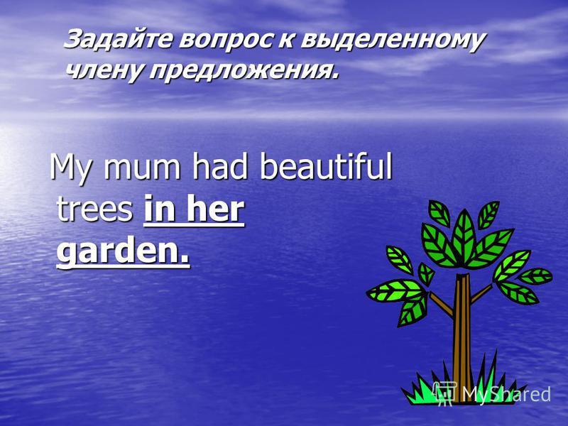 Задайте вопрос к выделенному члену предложения. My mum had beautiful trees in her garden. My mum had beautiful trees in her garden.