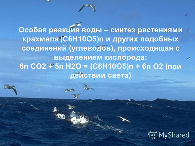 Особая реакция воды – синтез растениями крахмала (C6H10O5)n и других подобных соединений (углеводов), происходящая с выделением кислорода: 6n CO2 + 5n H2O = (C6H10O5)n + 6n O2 (при действии света)