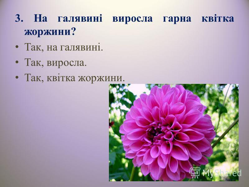 3. На галявині виросла гарна квітка жоржини? Так, на галявині. Так, виросла. Так, квітка жоржини.