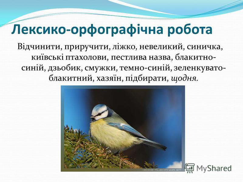 Лексико-орфографічна робота Відчинити, приручити, ліжко, невеликий, синичка, київські птахолови, пестлива назва, блакитно- синій, дзьобик, смужки, темно-синій, зеленкувато- блакитний, хазяїн, підбирати, щодня.