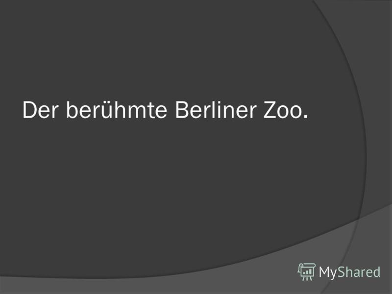 Der berühmte Berliner Zoo.