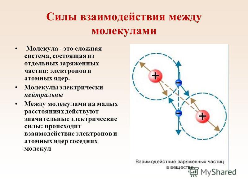 Силы взаимодействия между молекулами Молекула - это сложная система, состоящая из отдельных заряженных частиц: электронов и атомных ядер. Молекулы электрически нейтральны Между молекулами на малых расстояниях действуют значительные электрические силы