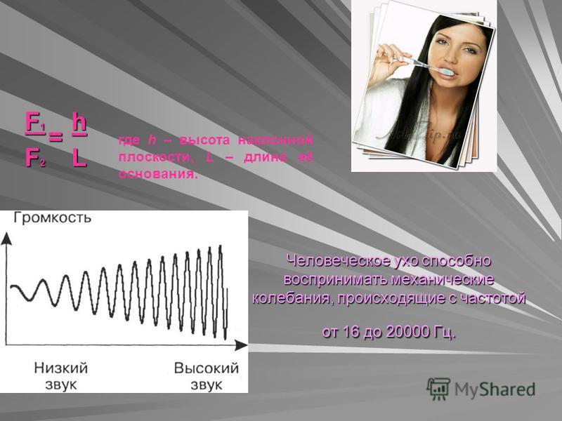 Человеческое ухо способно воспринимать механические колебания, происходящие с частотой от 16 до 20000 Гц. F1F1F2F2F1F1F2F2hL = где h – высота наклонной плоскости, L – длина её основания.
