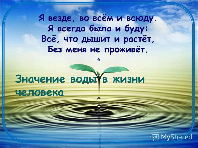 Что бы это значило? «с лица воду не пить» «толочь воду в ступе» «носить воду решетом» «льёт, как из ведра» «что с гуся вода» «вода и камень точит»
