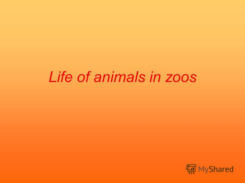 Life of animals in zoos