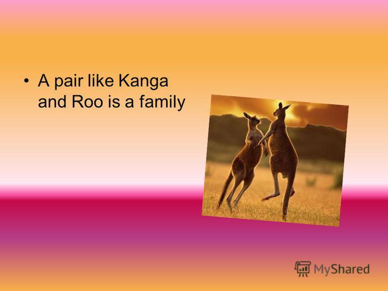 A pair like Kanga and Roo is a family