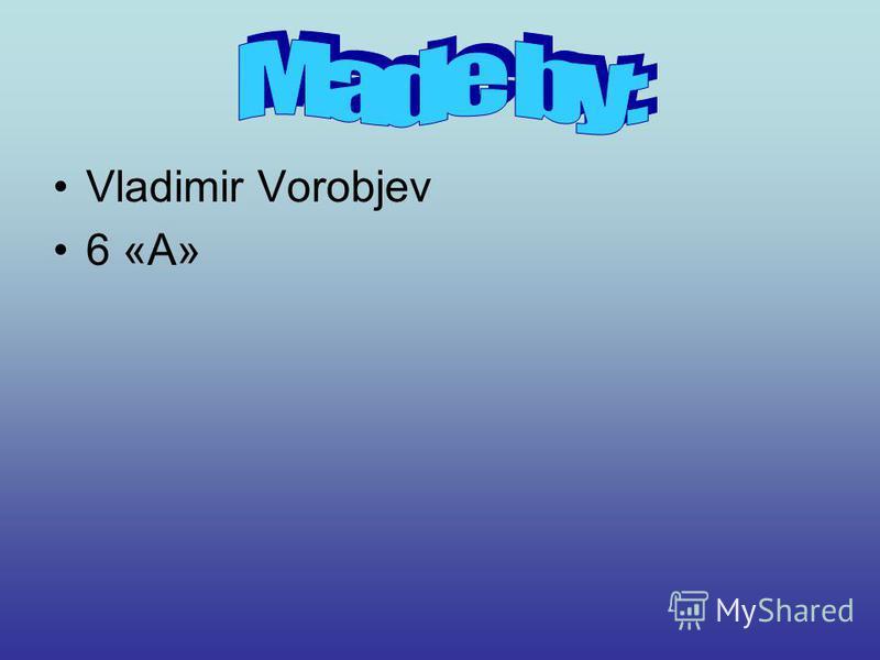 Vladimir Vorobjev 6 «А»