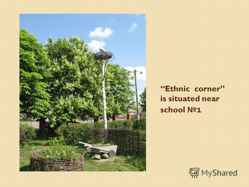 Ethnic corner is situated near school 1