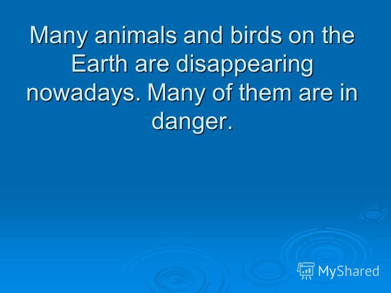 Many animals and birds on the Earth are disappearing nowadays. Many of them are in danger.