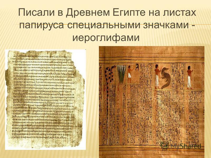 Писали в Древнем Египте на листах папируса специальными значками - иероглифами
