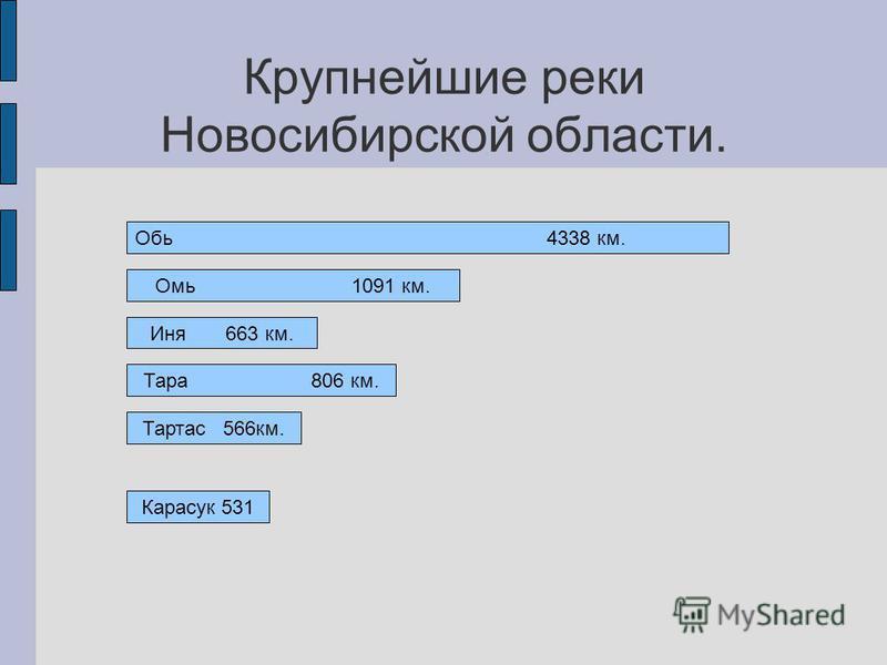 Крупнейшие реки Новосибирской области. Обь 4338 км. Омь 1091 км. Иня 663 км. Тара 806 км. Тартас 566 км. Карасук 531
