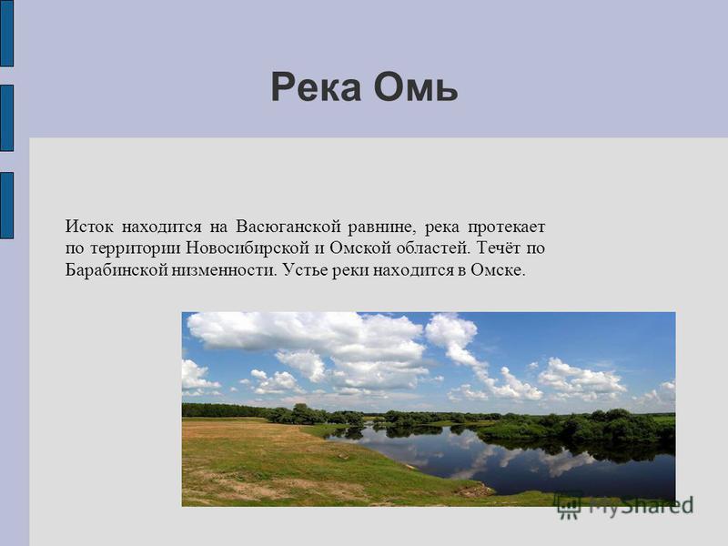 Река Омь Исток находится на Васюганской равнине, река протекает по территории Новосибирской и Омской областей. Течёт по Барабинской низменности. Устье реки находится в Омске.