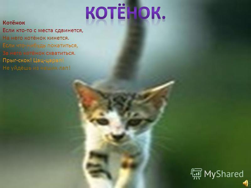 Котёнок Если кто-то с места сдвинется, На него котёнок кинется. Если что-нибудь покатиться, За него котёнок схватиться. Прыг-скок! Цац-царап! Не уйдёшь из наших лап!