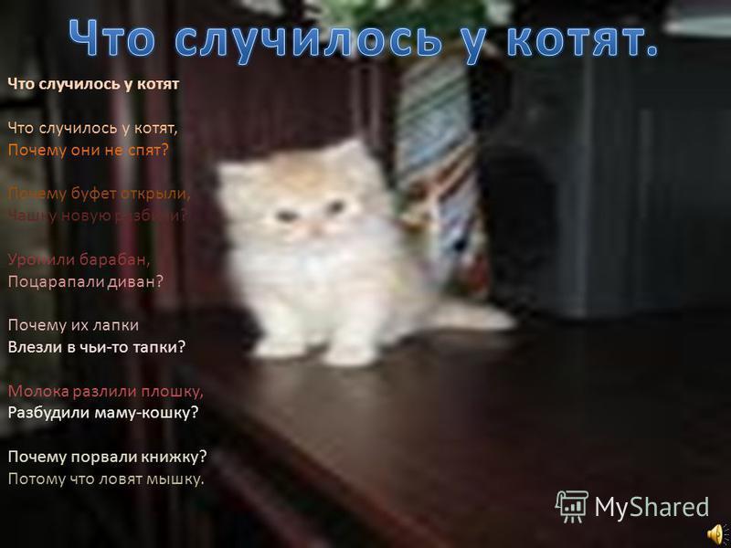 Что случилось у котят Что случилось у котят, Почему они не спят? Почему буфет открыли, Чашку новую разбили? Уронили барабан, Поцарапали диван? Почему их лапки Влезли в чьи-то тапки? Молока разлили плошку, Разбудили маму-кошку? Почему порвали книжку?