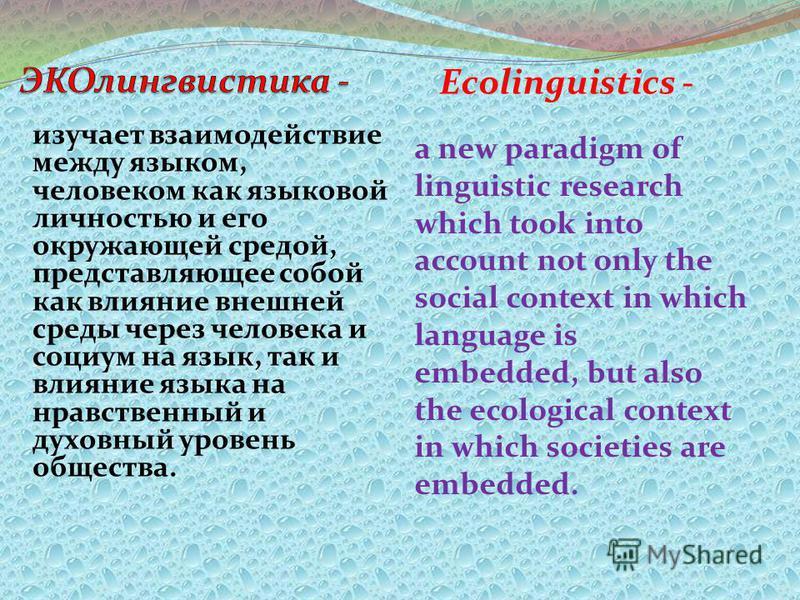 изучает взаимодействие между языком, человеком как языковой личностью и его окружающей средой, представляющее собой как влияние внешней среды через человека и социум на язык, так и влияние языка на нравственный и духовный уровень общества. Ecolinguis