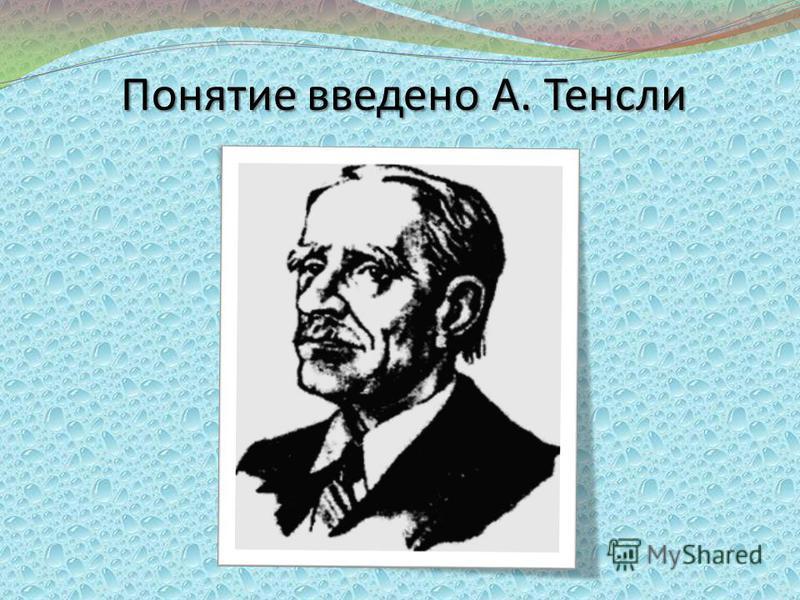 Понятие введено А. Тенсли